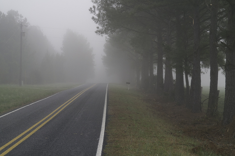 Country Road in fog, Montgomery County, North Carolina
