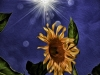 Large Sunflower and the Sun. Photo as oil painting.