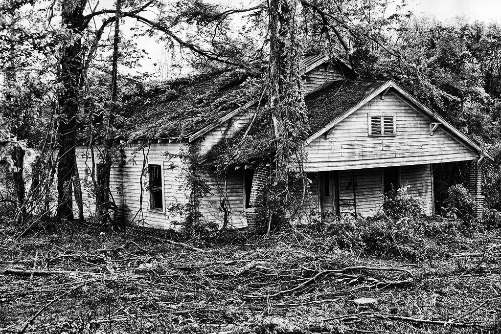 Abandoned house, Montgomery County, North Carolina.