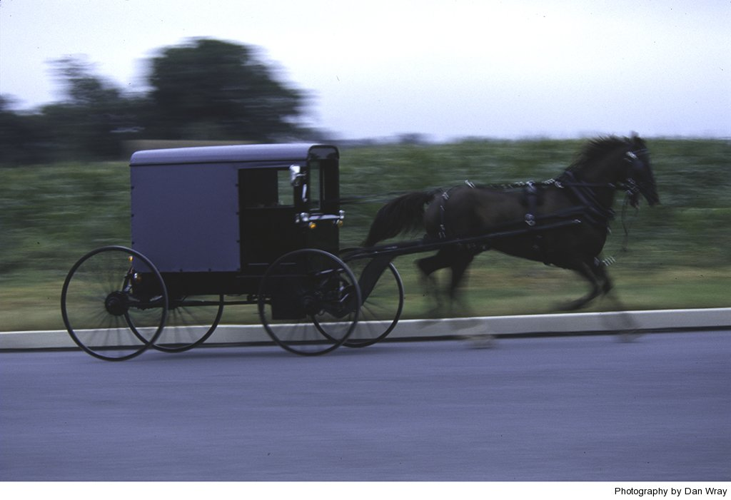 Amish horse-drawn carriage travelling rapidly along paved road in Pennsylvania.