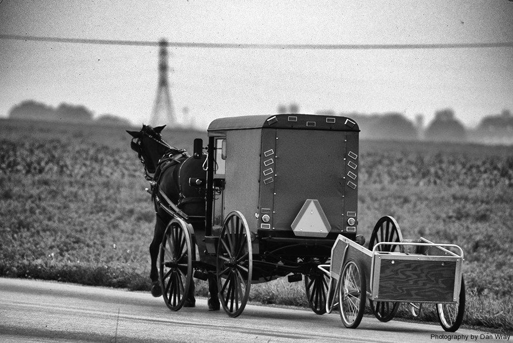 Cart to Cart