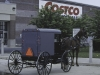 Amish horse-drawn carriage in front of Costco store in Pennsylvania.
