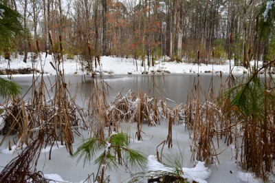 Farm pond in the wake of winter storm Pax, Piedmont of North Carolina.