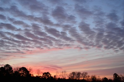 Dawn in the Piedmont of North Carolina, winter.