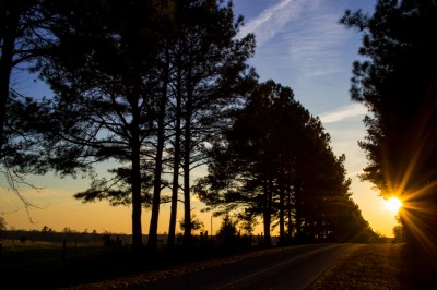 Sunset on a country road, Piedmont of North Carolina.