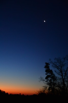 Dawn before sunrise, Moon in last phase.