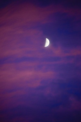 crescent Moon at twilight with magenta clouds.