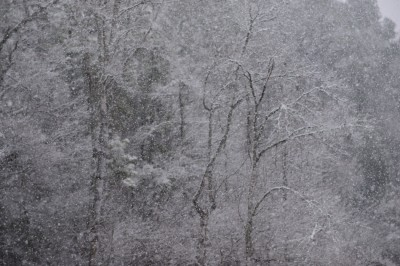 Winter Storm Pax in Montgomery County, North Carolina.