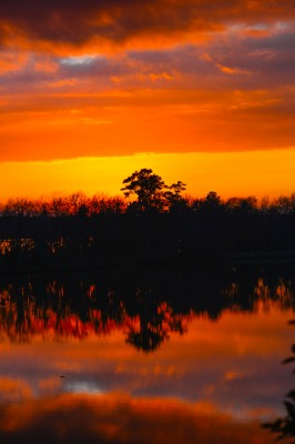 Sunset over the Cooper river from Medkin Abbey in South Carolina.