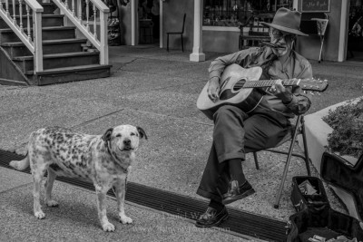 Street singer and his dog, Taos, New Mexico.