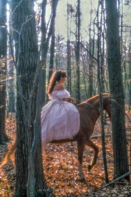 A woman in her bridal dress riding a horse through the woods in upstate New York. (MR)