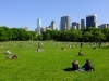 Central Park, NYC on a beautiful Spring day.
